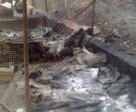 Feuer auf der Finca von Chantal Im Tierschutz ist immer etwas […]
