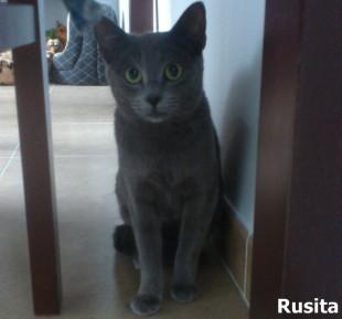 Rusita_0001