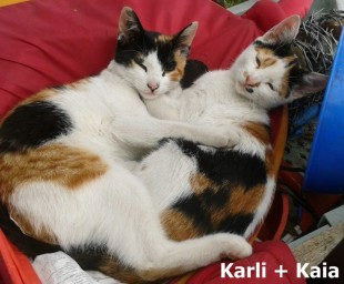 Karli + Kaia_0001