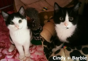 Cindy + Barbie_0001
